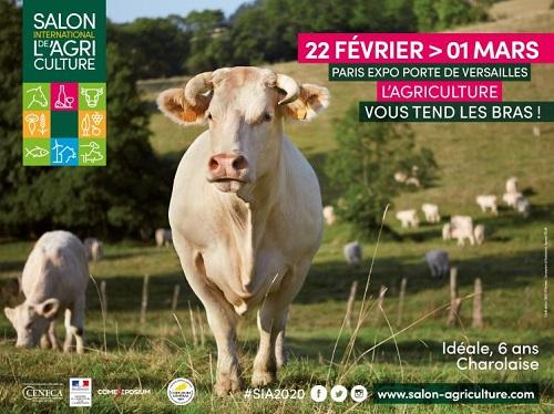 Salon International de l'Agriculture : la plus grande ferme de France revient !